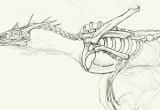 ss-skeleton-2007b1